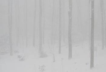 hazy snow scene horizontal