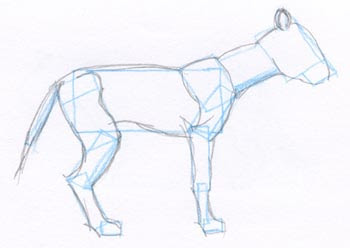 pencil sketch of generic animal with blue guidelines