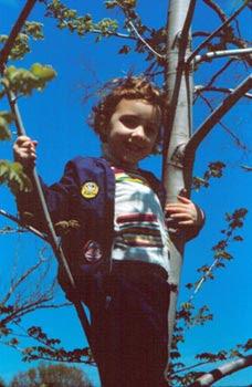 tree climbing MS