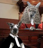 Rosey & Horner - QB Kangaroo Court