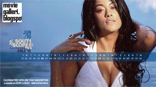 [Southscope+Calendar+Girls+-+2010_12.jpg]
