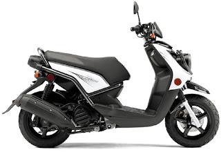 2010 Yamaha BWs / Zuma 125 Motorcycle Cover