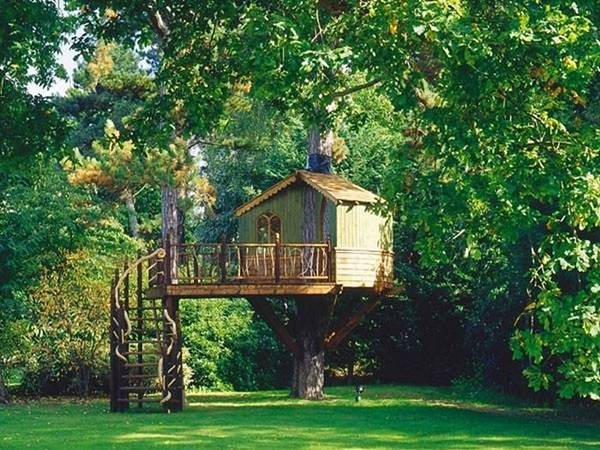http://4.bp.blogspot.com/_kNx32ckJC68/TOfU8RCraYI/AAAAAAAAFkw/zyjirRegrP8/s1600/tree_house_05.jpg
