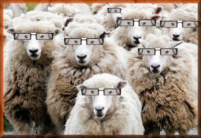 sheep_with_glasses_frames_1217472309.jpg