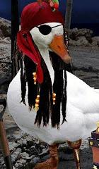 Philippe Duck a l'orage