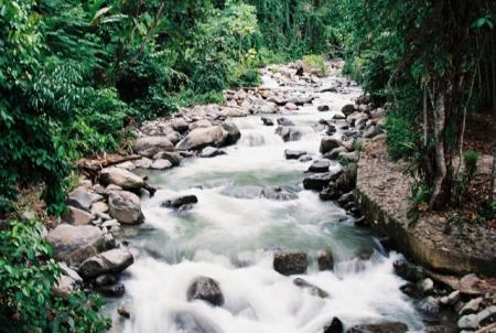 Sungai ♥
