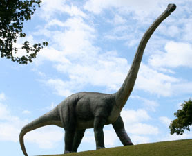 Sauropoda Dinosaur having osteoderms