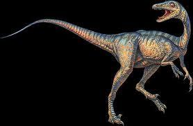 Troodon-The Smartest Dinosaur