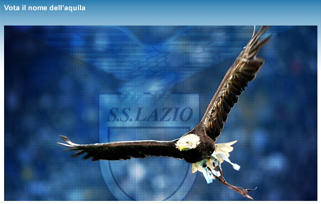 http://4.bp.blogspot.com/_kTMDt-KlAAw/TKRvqyPLs7I/AAAAAAAACYs/8AbVYRp0P7w/s1600/bg_aquila.jpg
