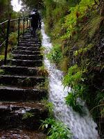 Levada walk