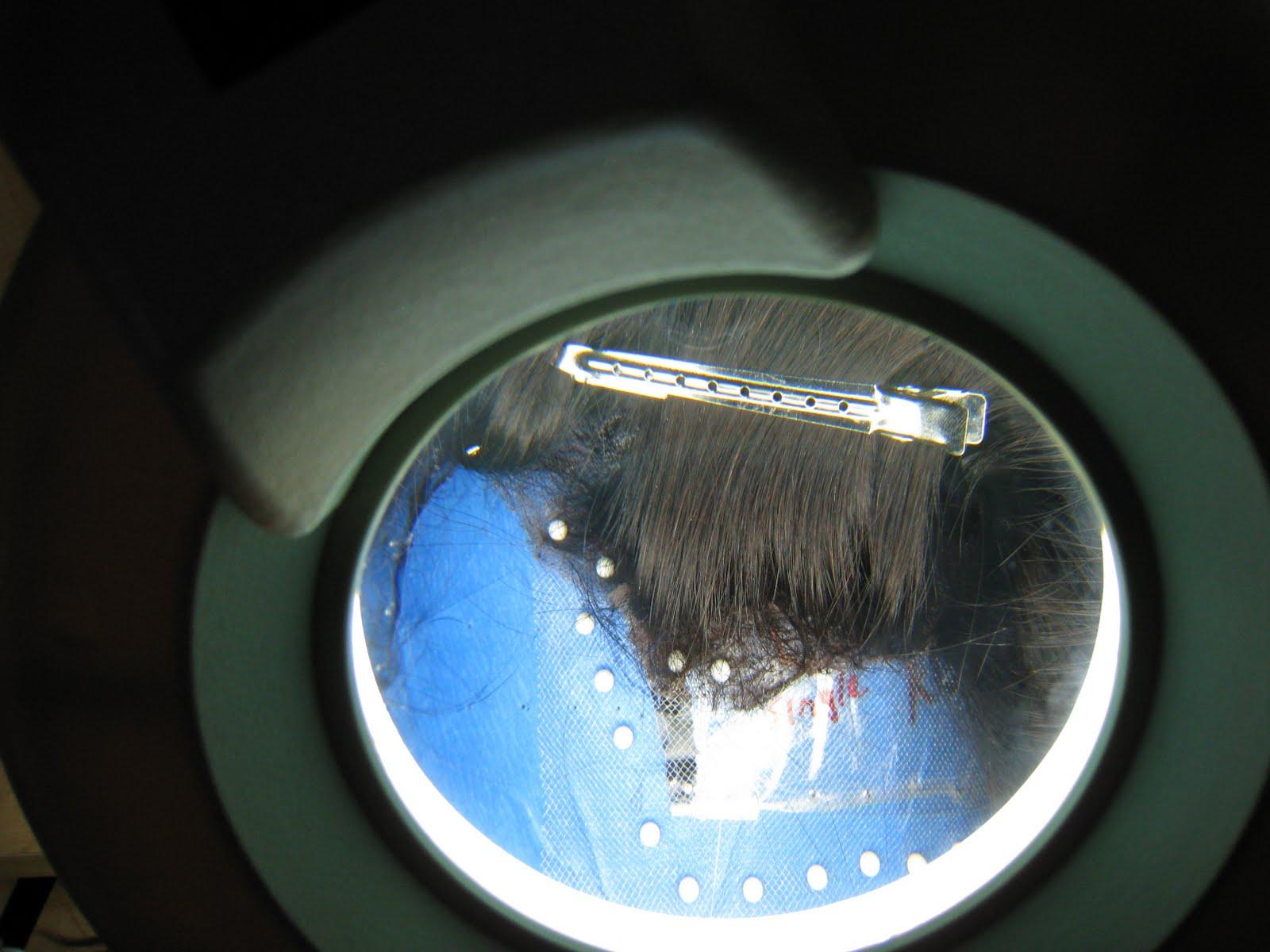 Wig Making - A Lost Art: May 2010