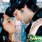 Ranbir And Sonam In Love