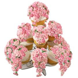 Cake Decorating Classes Near Altoona Pa : Wilton Method Student Page: Cute Idea: Festive Floral Cupcakes