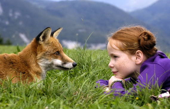 The Fox and the Child, Photograph