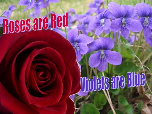 roses red violets blue Roses Are Red Violets Are Blue Poems Love