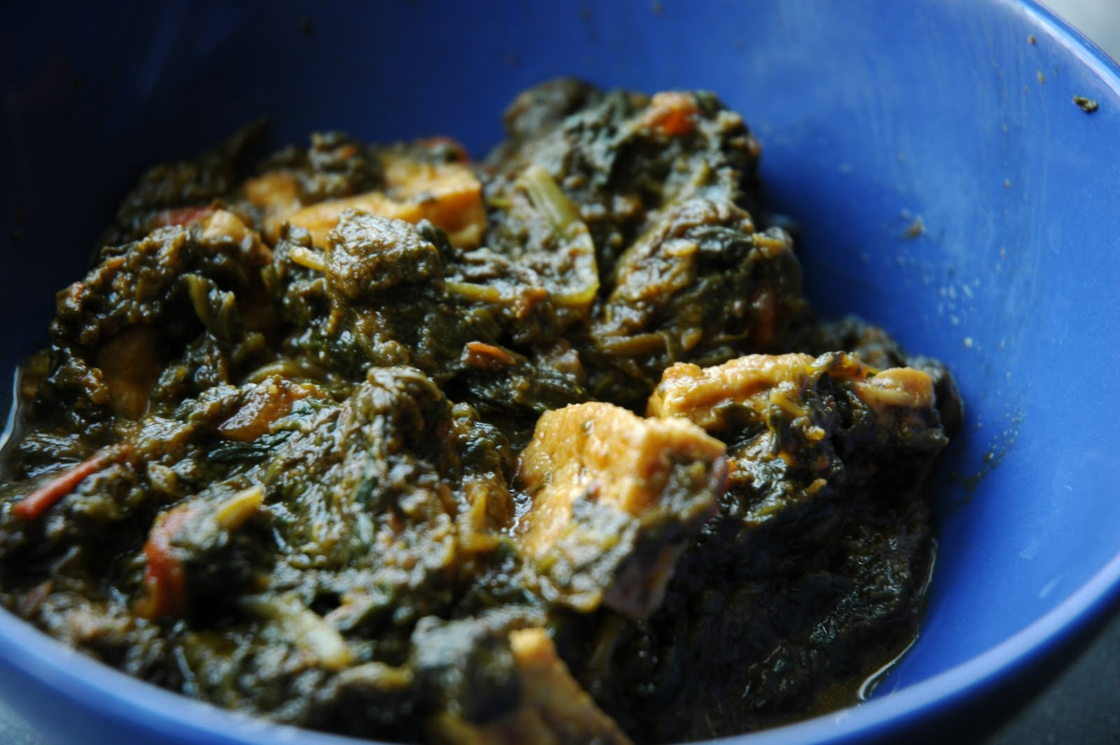 Saag Tofu and Onion Garlic Naan