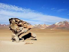 Arbol de Piedra - Bolivie