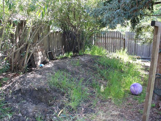 ugly garden april 2010