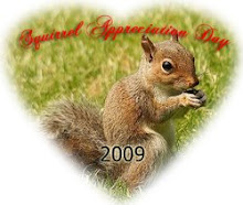 Everyday is Squirrel Appreciation Day!
