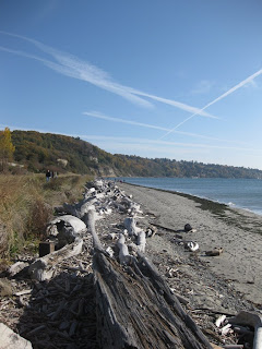 Magnolia Bluffs from Discovery Park Lighthouse