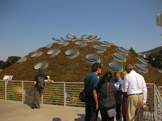 California Academy of Sciences - Living Roof