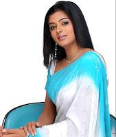 Priyamani wearing the beautiful saree stills