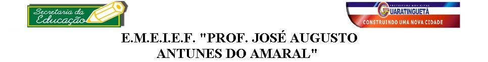 """E.M.E.I.E.F """"Prof. José Augusto Antunes do Amaral"""""""