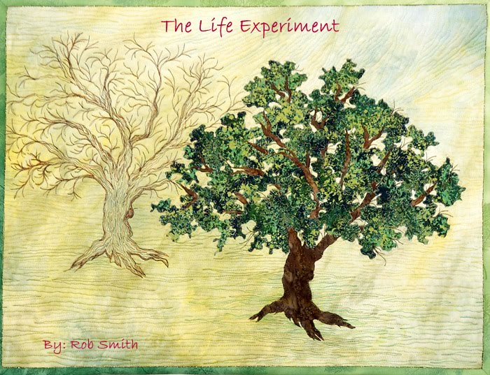 The Life Experiment