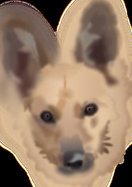 intentando vectorizar la cara de mi perra Yeñé