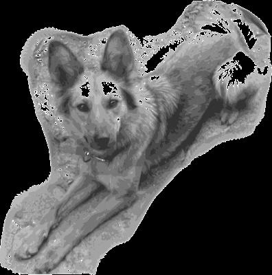 Mi perra Yeñé vectorizada según el cuarto seteo