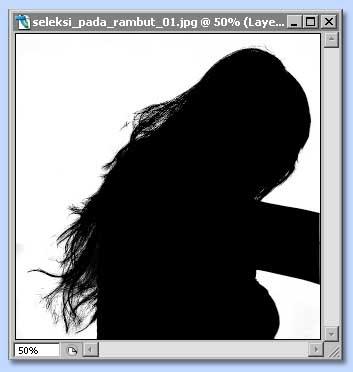 tutorial photoshop untuk membuat seleksi dengan channel dan layer mask, gambar 4
