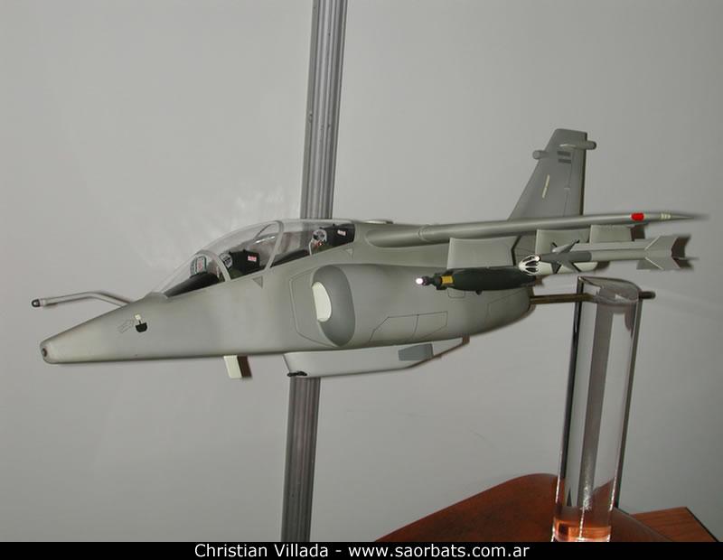 Exclusivo: así sería el Pampa III/GT (Generación Táctica) Aeron5_DSCN9819_jpg