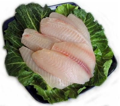 Proyecto pragmalia 227 cr a y reproducci n del pez tilapia for Cria de tilapia
