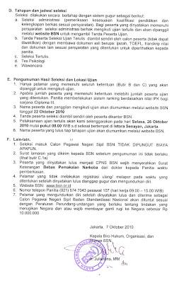 Info CPNS BSN 2010