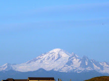 Mt. Baker