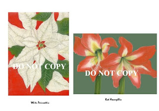 r-atencio-red-amaryllis-white-poinsettia-note-card