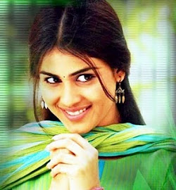 Orange Genelia  Wallpapers