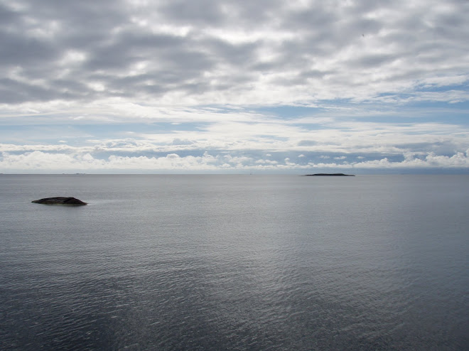 2010-09-06 Ett segel skymtar ute på Bråviken. Hoppas det kan vara jag nästa vecka ;-)