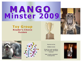 Mango Minster 2009 - Toy Group