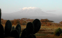 Kilimanjaro in morning