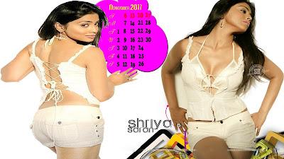 Shriya Saran Calendar 2011 Navel Queens