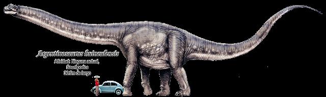 Argentinosaurus huinculensis a escala.