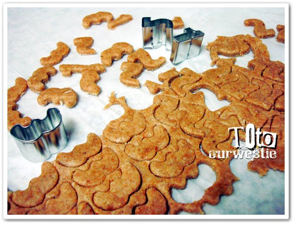 natural dog biscuit
