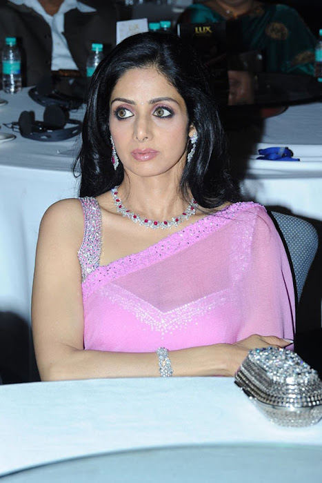 sridevi beautiful pic photo gallery