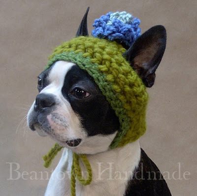 Knitting Patterns For Dogs Hats : Studying Animals: Knitted Hats and Sweaters for Cats and Dogs