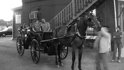 Trotter Carriage Company