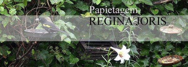 Papietagem de Regina Joris