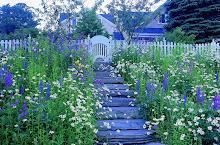 My ideal garden!
