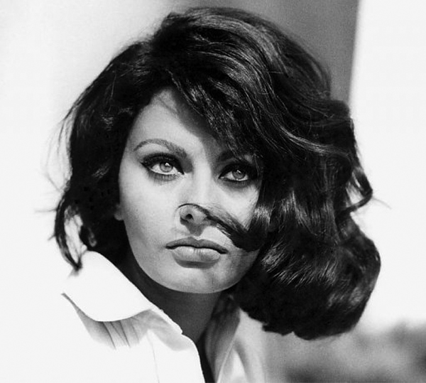 Forests Sophia Loren Photos Italy