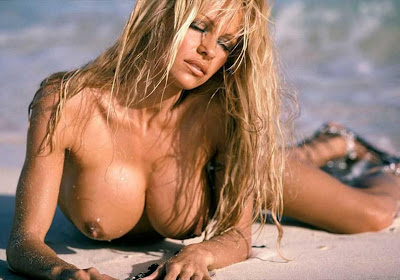 Free Pamela Anderson Sex Videos, Pam Anderson Brett Michaels Video, ...